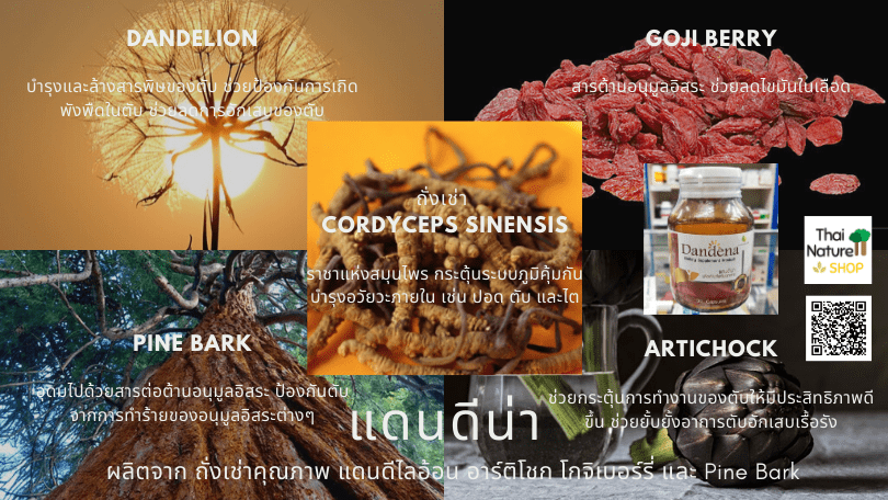 Dandena ingredients
